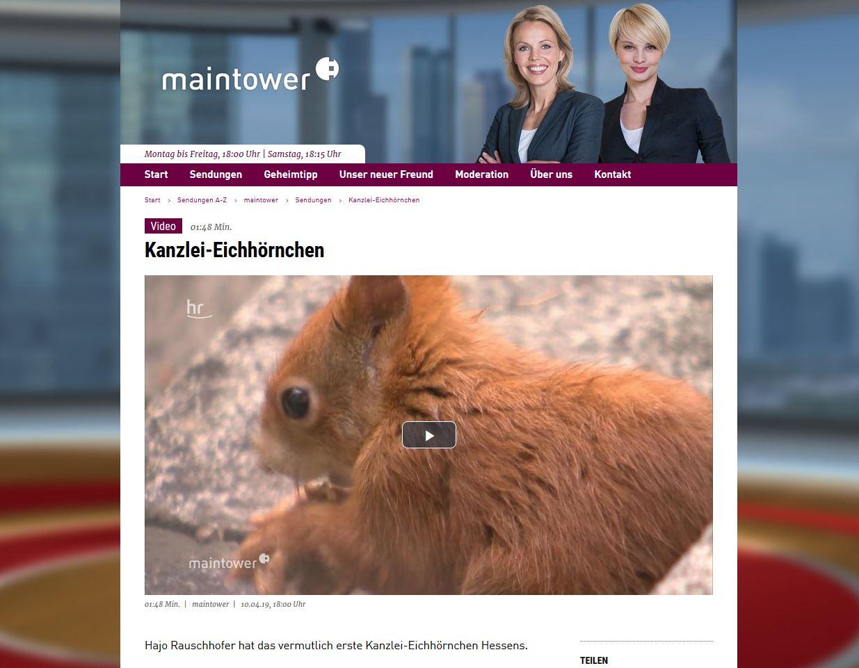Kanzlei-Eichhörnchen im Fernsehen / Das Netz sucht einen Namen